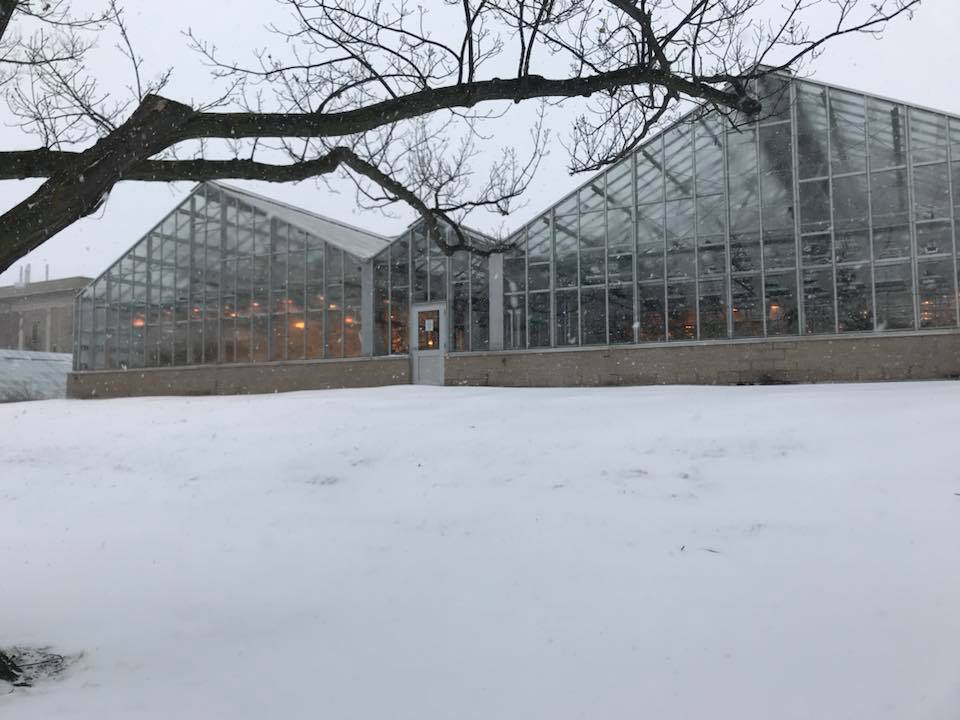Winter Greenhouses