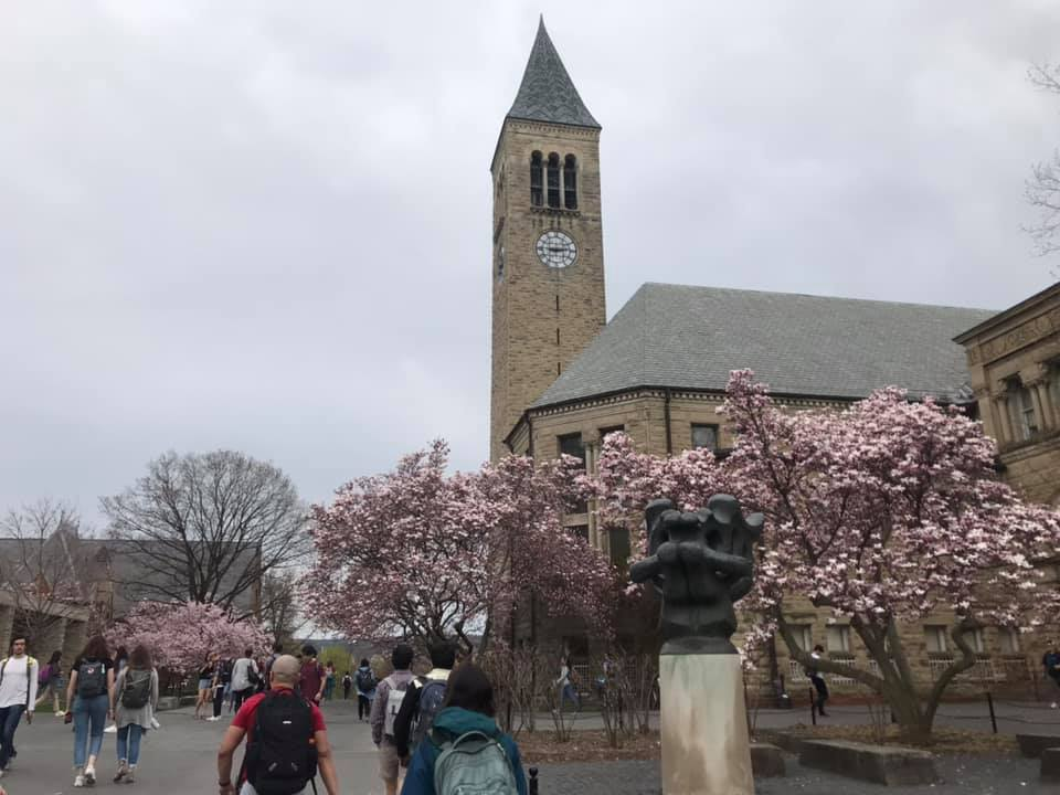 Cornell University in Spring
