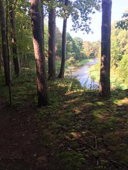 Cayuga Trail