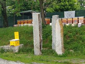 foto dell'apiario didattico a Collegno
