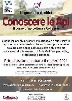 A_Volantino Corso apicoltura 21.png