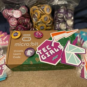 TECgirls micro:bit workshops for primary schools are a big hit!