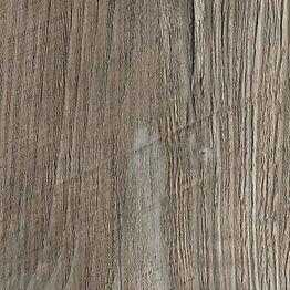 R55004-Ponderosa-Pine.jpg