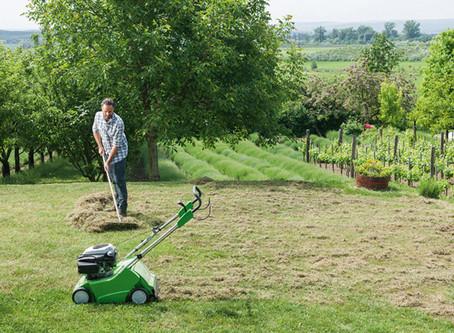 Marzec w ogrodzie: wertykulacja trawnika, piaskowanie