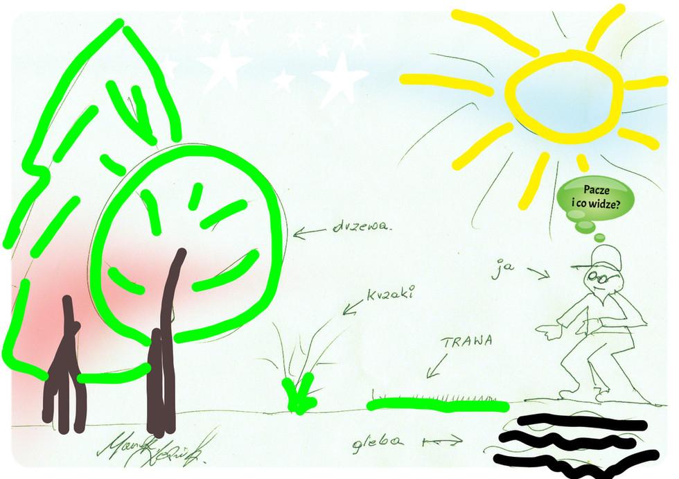 Kumulacja prac w ogrodzie! Drzewa, krzewy, trawa, gleba