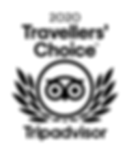 TC_2020_LL_WHITE_BG.png