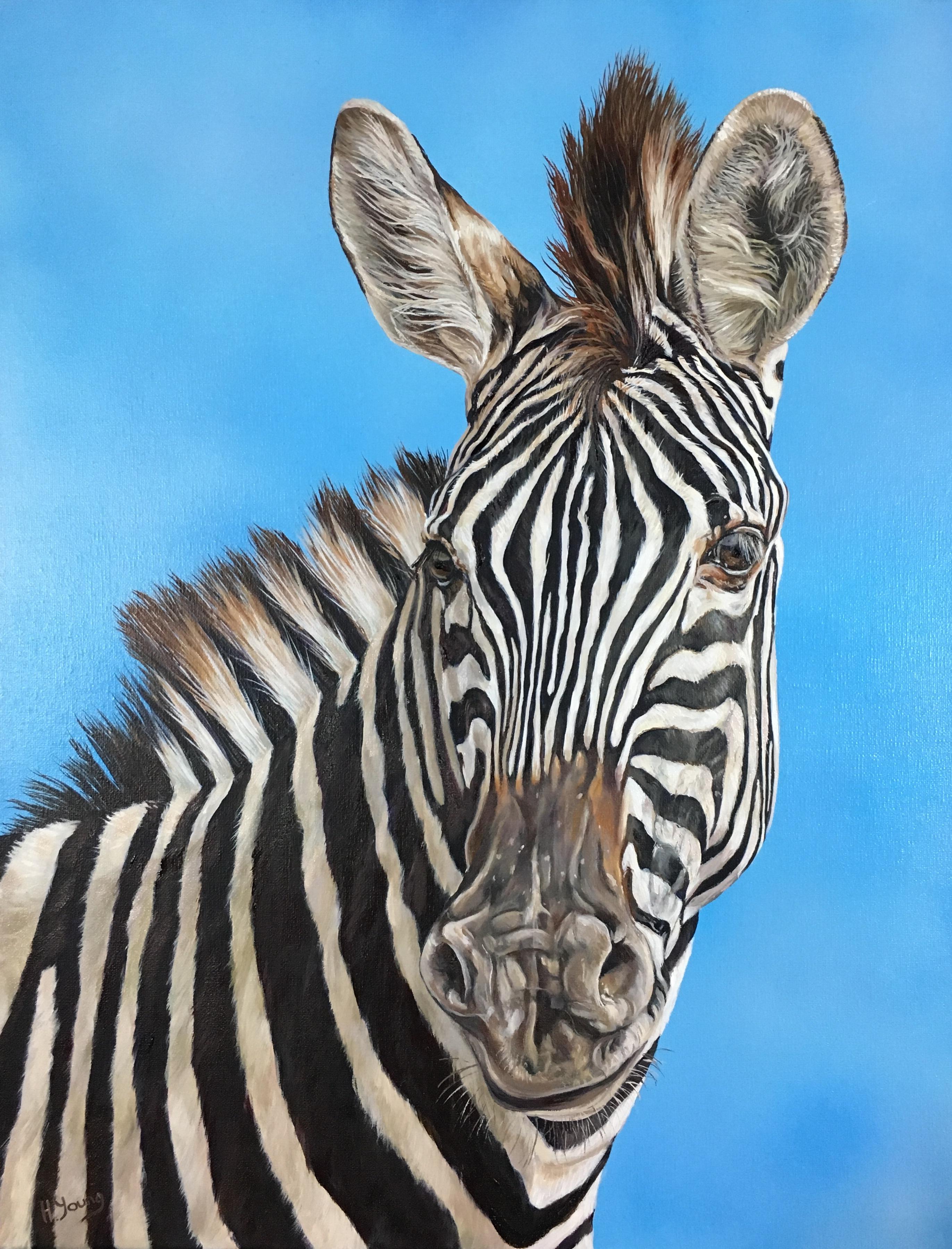 Zebra - Oils