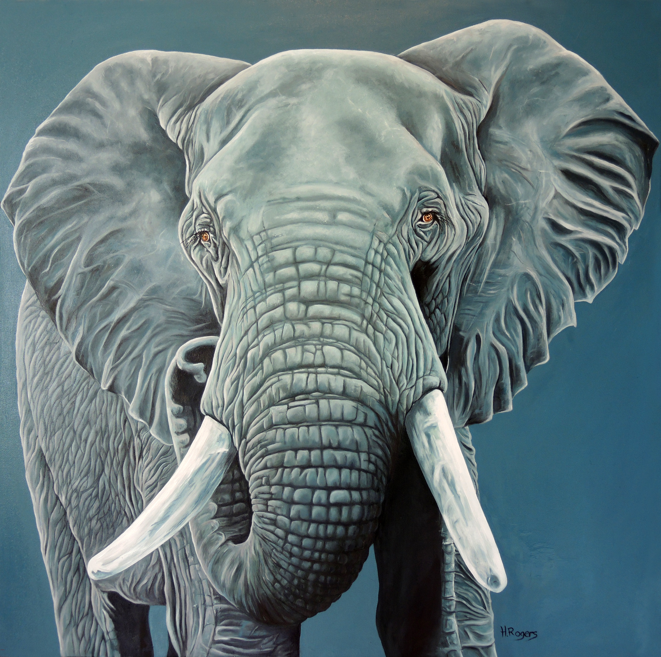 Blue Elephant - Oils