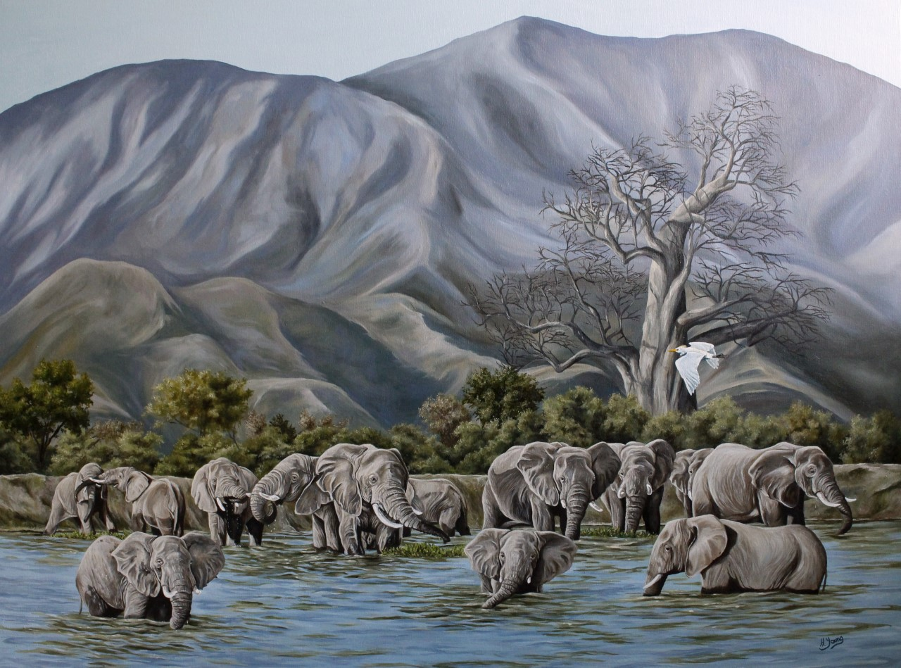 Zambezi Elephants - Oils