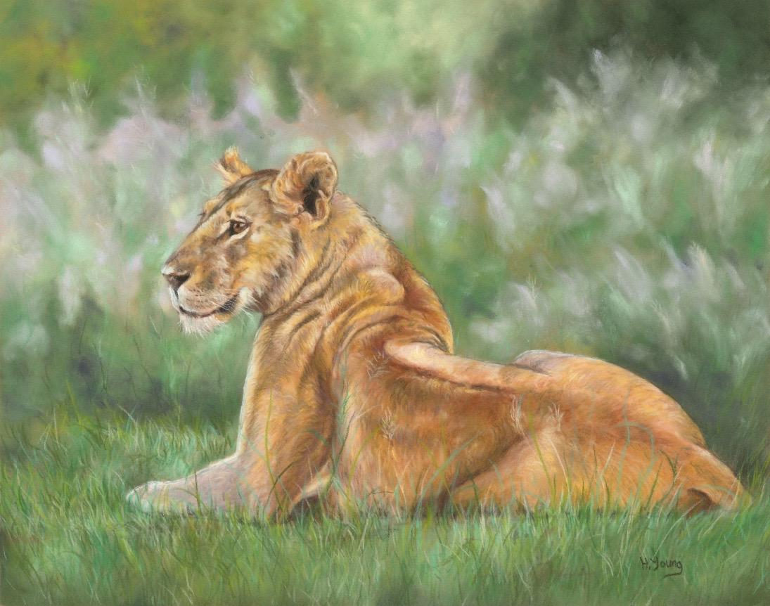 Lioness - Pastels