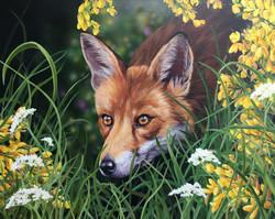 Fox - Acrylic