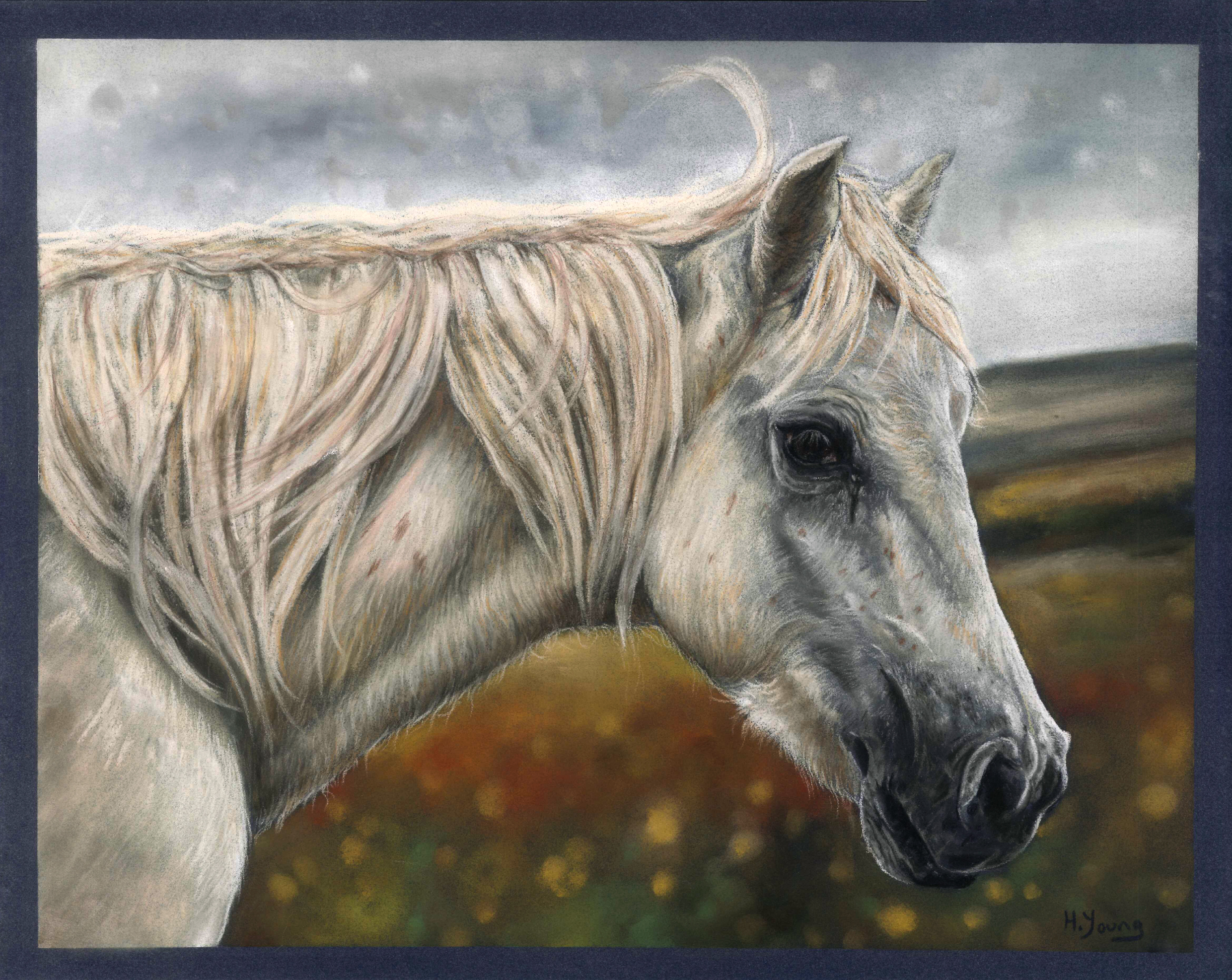 Welsh Pony - Pastels