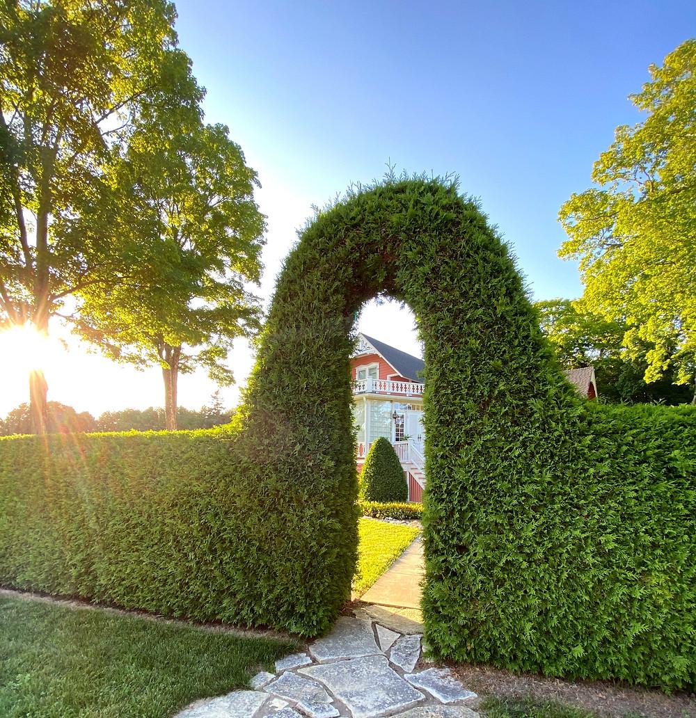 A whimsical hedge