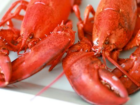 Maiden America – Bloody Lobsters – Dec. 7, 1776 (Part 1)