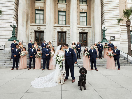 Including your Fur Baby on wedding day
