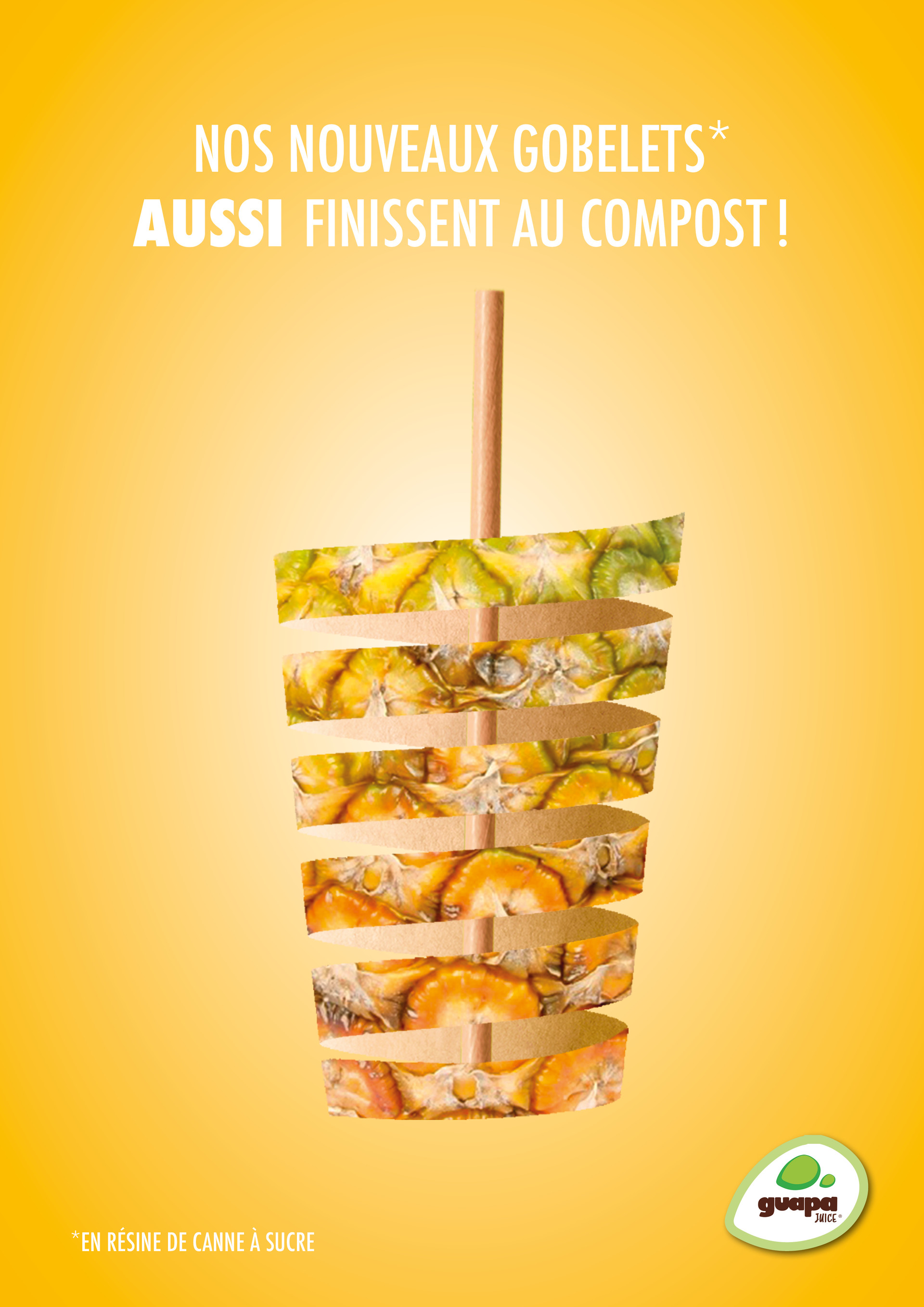 Campagne-fruits_cup_A42.jpg