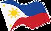 Flag transparent.png