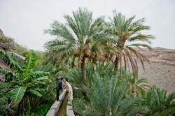 Oman-wedding004