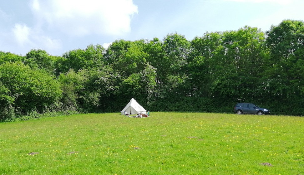 organic%20farm%20stay%20camping%20monmouthshire%20wales%20grass%20fed%20beef%20boxes_edited.jpg