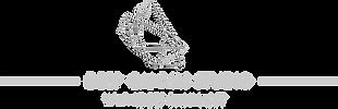 2019 logo deep canvas studio lg v2.png