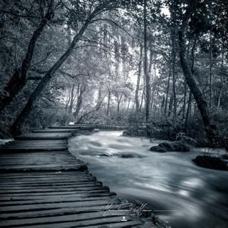 Plitvice Croazia by Mario Piercarlo Marino