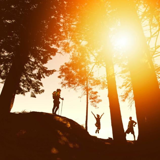 Alps-Adventure-trekking-S.jpg
