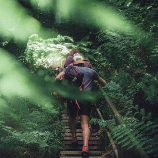 Alpine-trek-nature-S.jpg