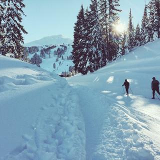 Winter-activity-Alps-skiing-S.jpg