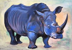 Rhino - Big 7