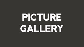 picture gallery.jpg
