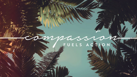 Compassion Fuels Action