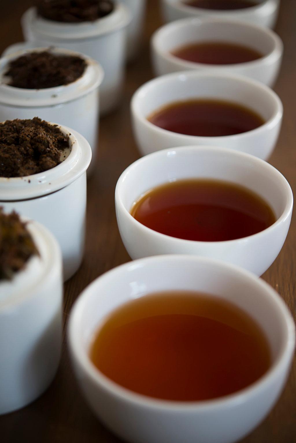 スリランカ7大産地 紅茶テイスティング体験