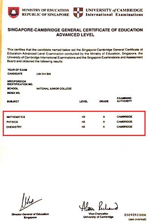 SB A Level Cert - censored.png