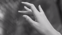 La Vie En Noir | 2015