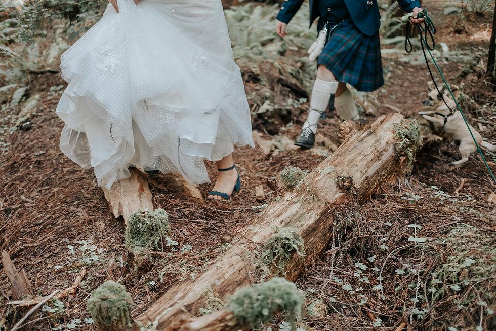 redwoood-elopement-california-amanda-cal