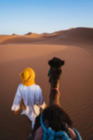 solo morocco luxury desert tour.jpg