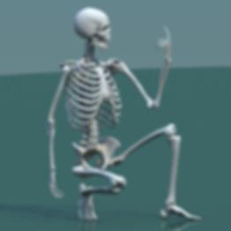 stephan-plotnicov-3d-model-human-skeleto