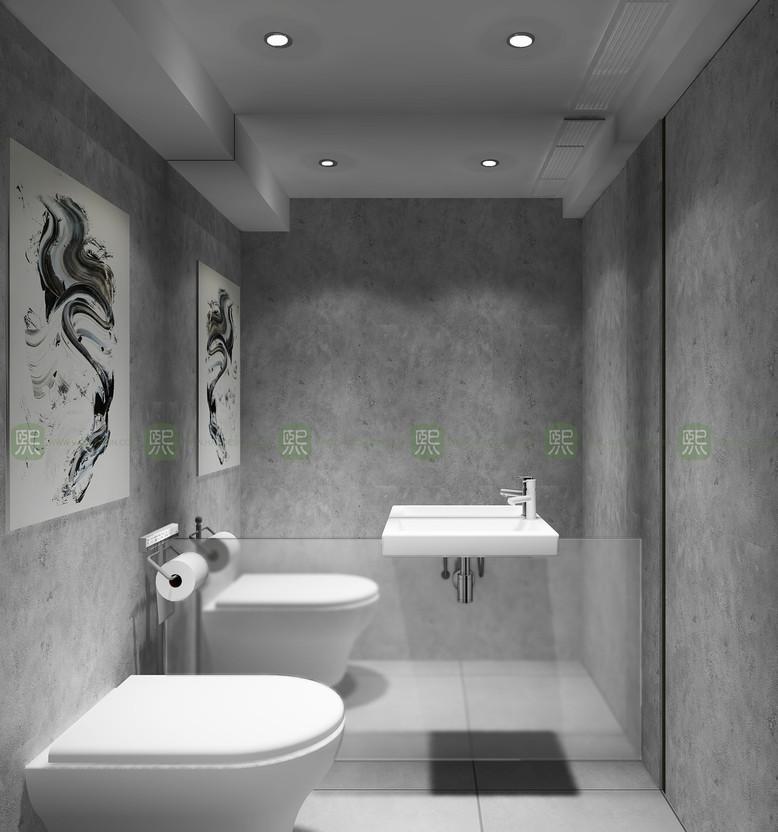 guest toilet 20170110.jpg