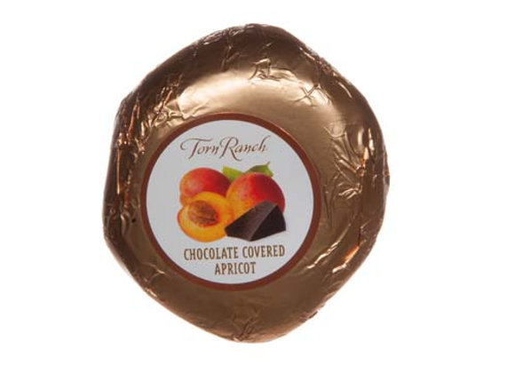 Torn Ranch Chocolate Dipped Apricot