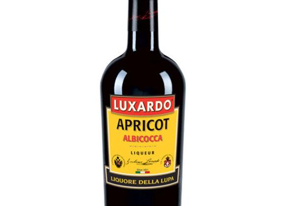 Luxardo Apricot