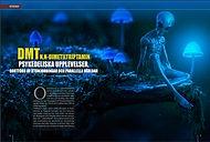 VETENSKAP:Dmtn, psykedeliska upplevelser Bortförd av utomjordingar, parallella världareller...? 