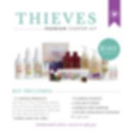 PSK_thieves.jpg