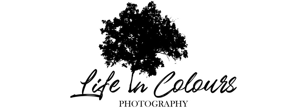 Logo Life in Colours V2 FInal-01.jpg