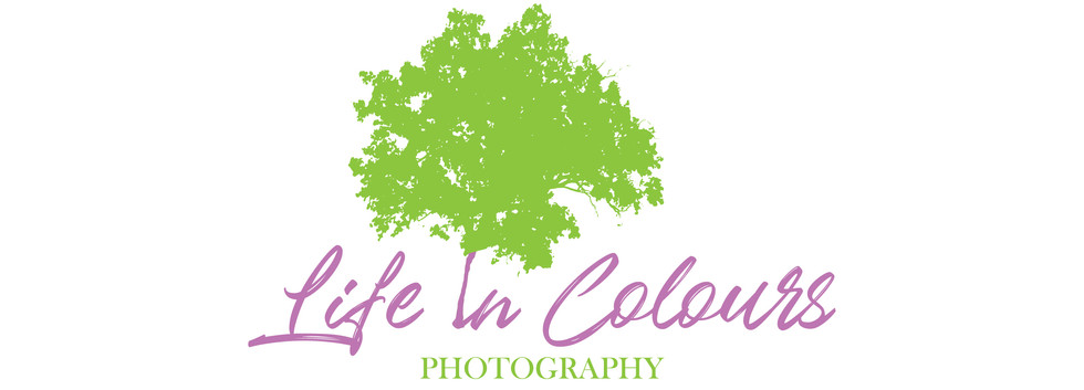 Logo Life in Colours V2 FInal-02.jpg