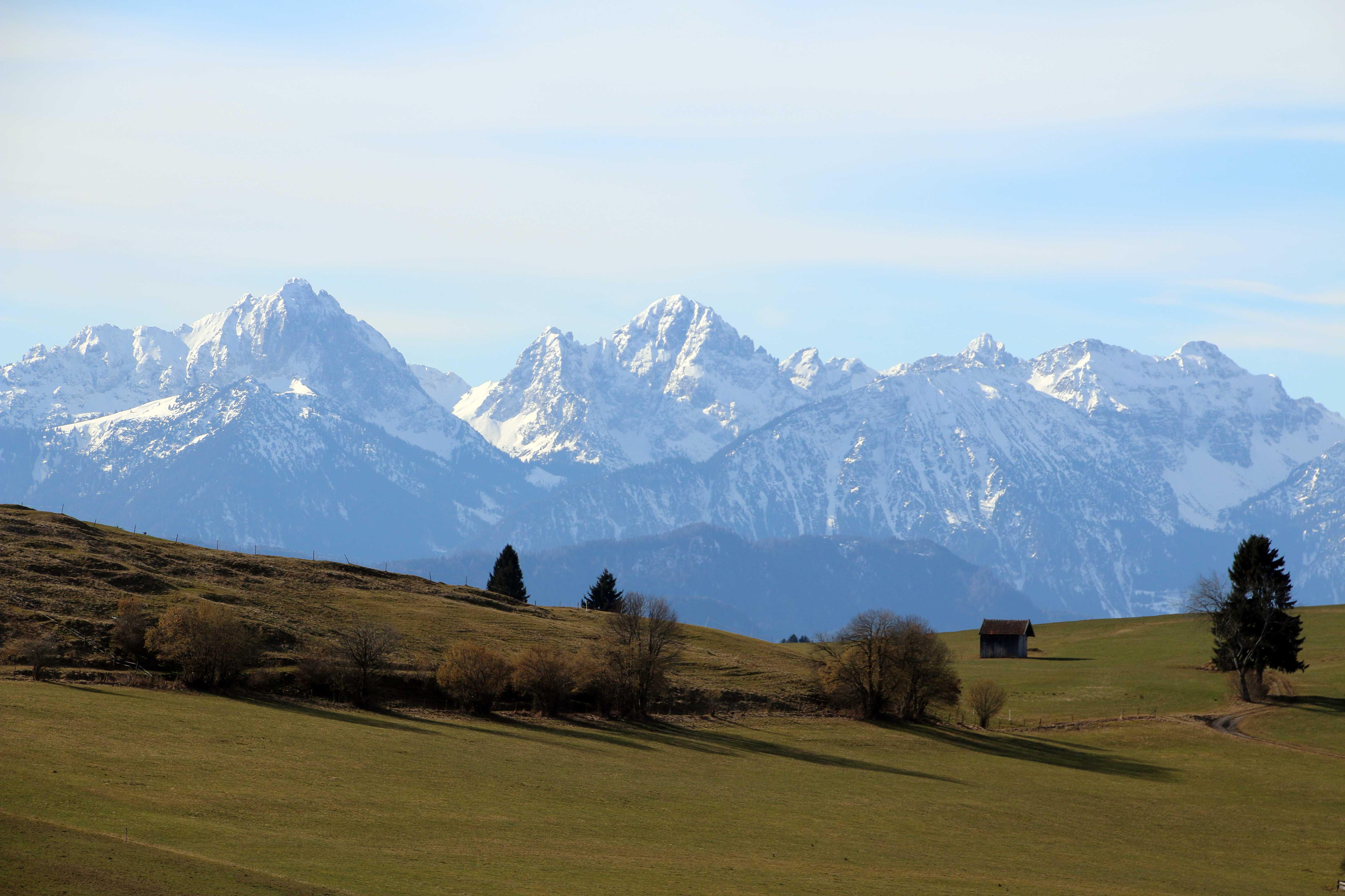 Gezuckerte Alpen & grüne Wiesen