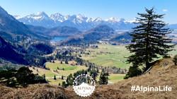 Alpinas Glücksgefühl: Der Allgäuer Königswinkel