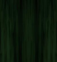 Labradorite - Dark Forest