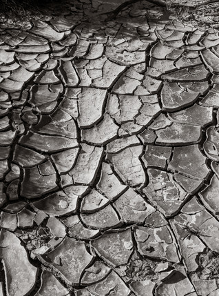 Parched Earth 2 (ca. 2014)