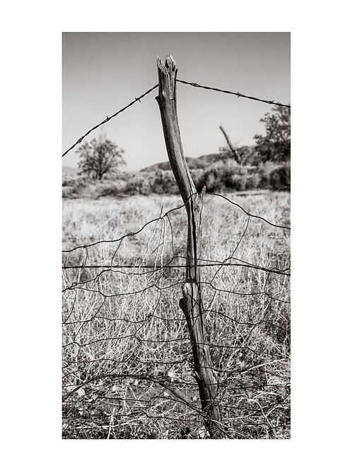 Barbed Wire and Fencing