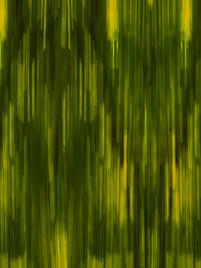Tourmaline - Yellow